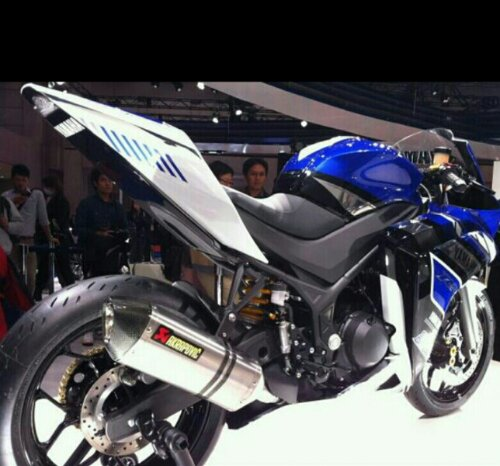 Yamaha R25 3